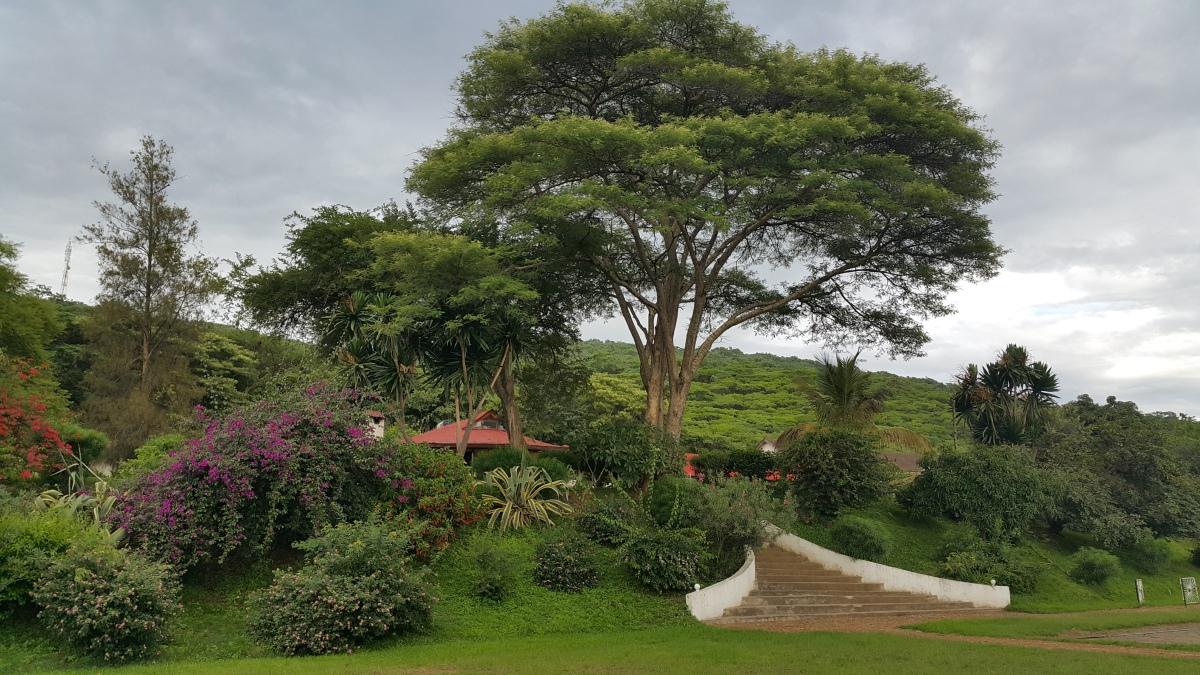 Tanzania – HeadingNorth